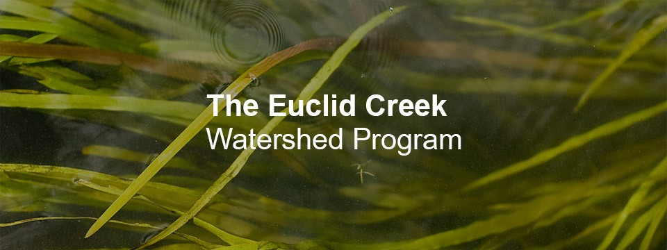 The Euclid Creek Watershed Program October 19th 2020 Update