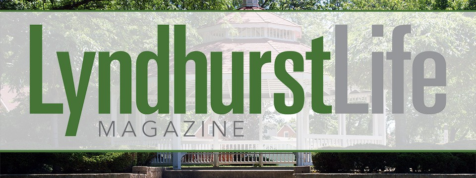 Lyndhurst Life Magazine November 2017 Issue Available Here