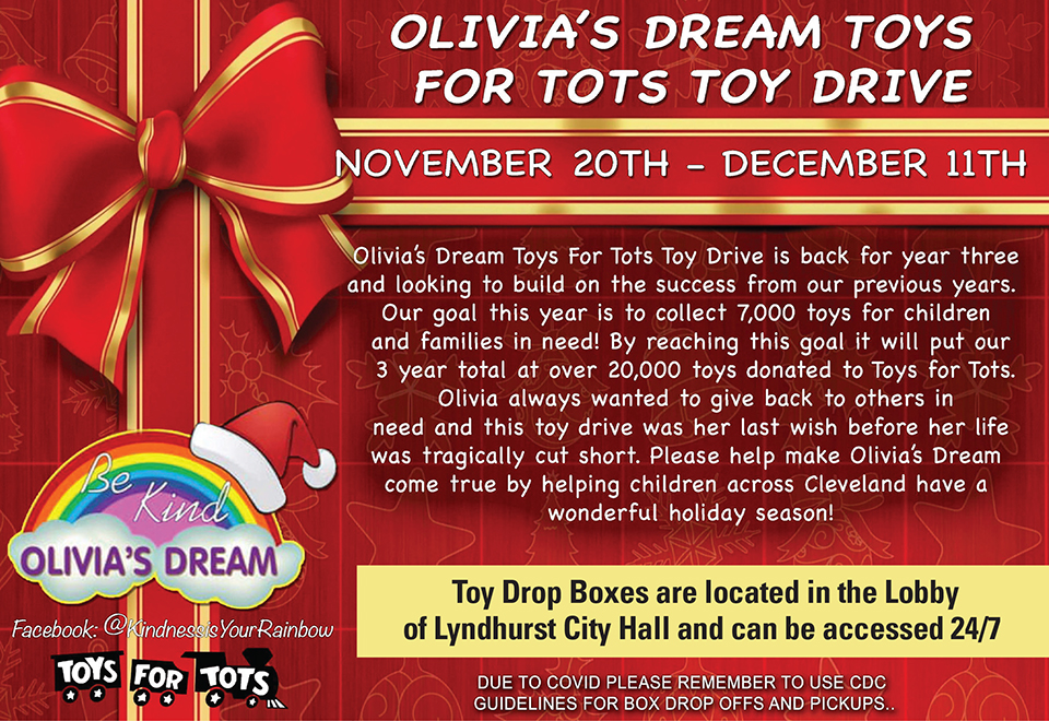 Olivia's Dream Toys for Tots Toy Drive flier.