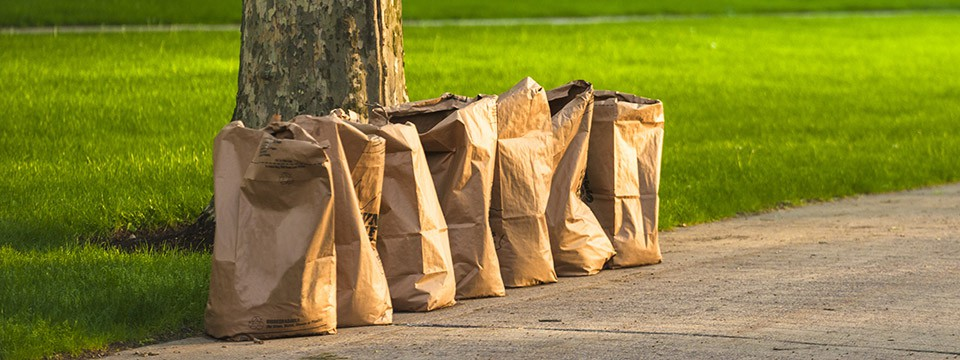Spring is Springing! So It's Time To Talk Yard Waste!