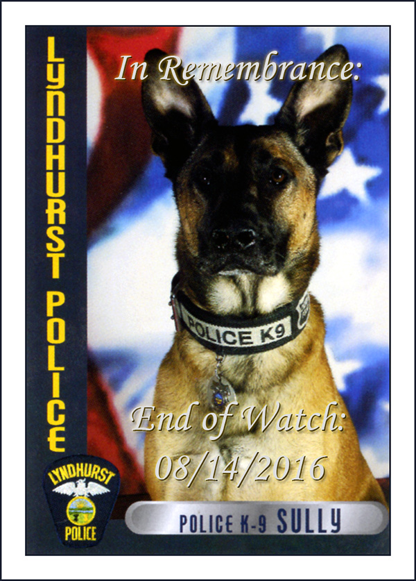 In Remembrance: City of Lyndhurst, Ohio Police Department, Retired K9 Sully End of Watch: August 14th 2016 - City of Lyndhurst, Ohio