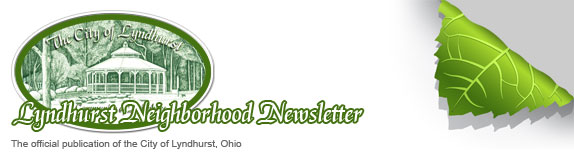 Lyndhurst Neighborhood Newsletter header.